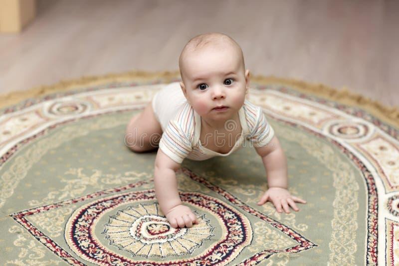 Baby die op tapijt kruipt royalty-vrije stock afbeelding