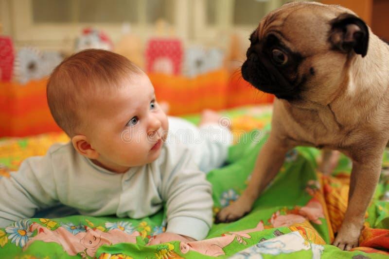 Baby and dog. Cute baby girl looking at pug dog