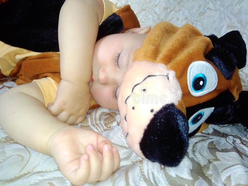 Baby in dog costume. Cute sleeping baby in dog costume on beige background royalty free stock photo