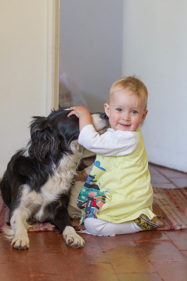 Baby smiling and hugging a dog. Baby girl age 10 month in yellow dress playing with her dog border collie royalty free stock photography