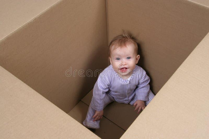 Baby in Doos klaar om worden verscheept royalty-vrije stock foto