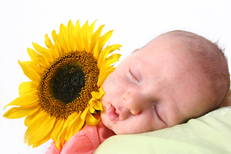 Baby in dreamland. Young baby in dreamland royalty free stock photo