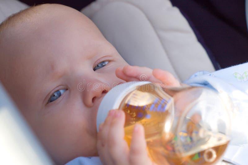 Baby drinking tea royalty free stock image