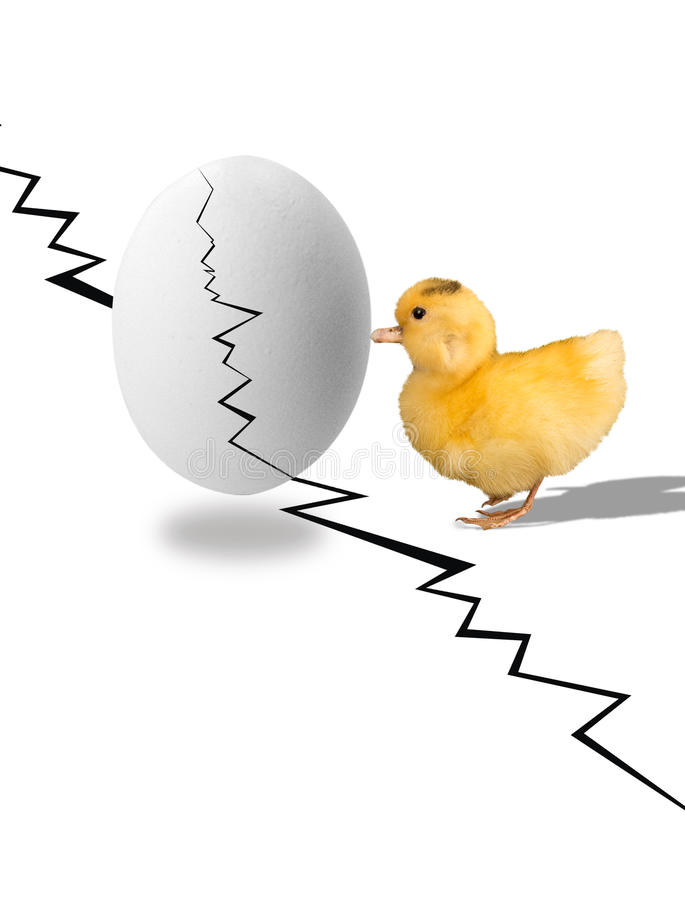 Baby Ducky lizenzfreies stockbild
