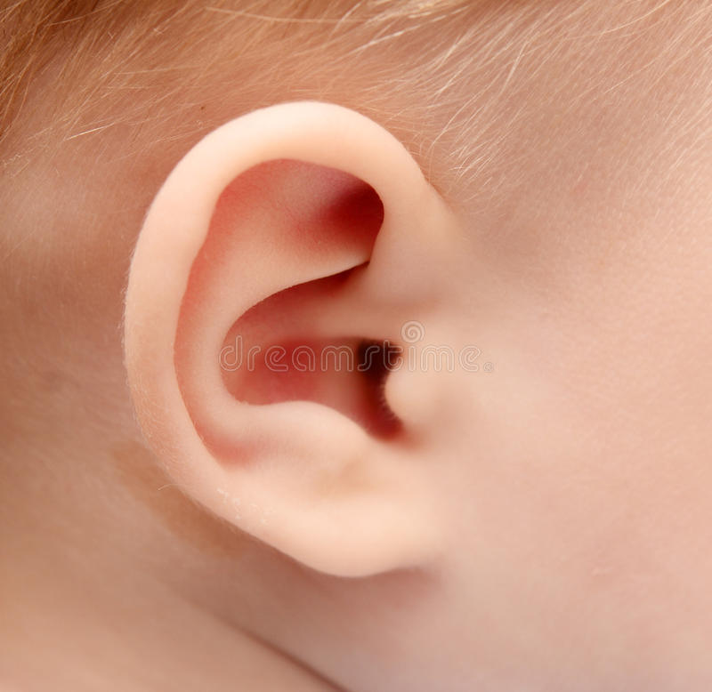 Download Baby ear stock image. Image of hand, up, human, infant - 26628875