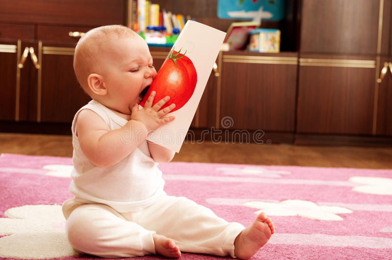 Download Baby eat tomato stock image. Image of cards, hand, learning - 20144615