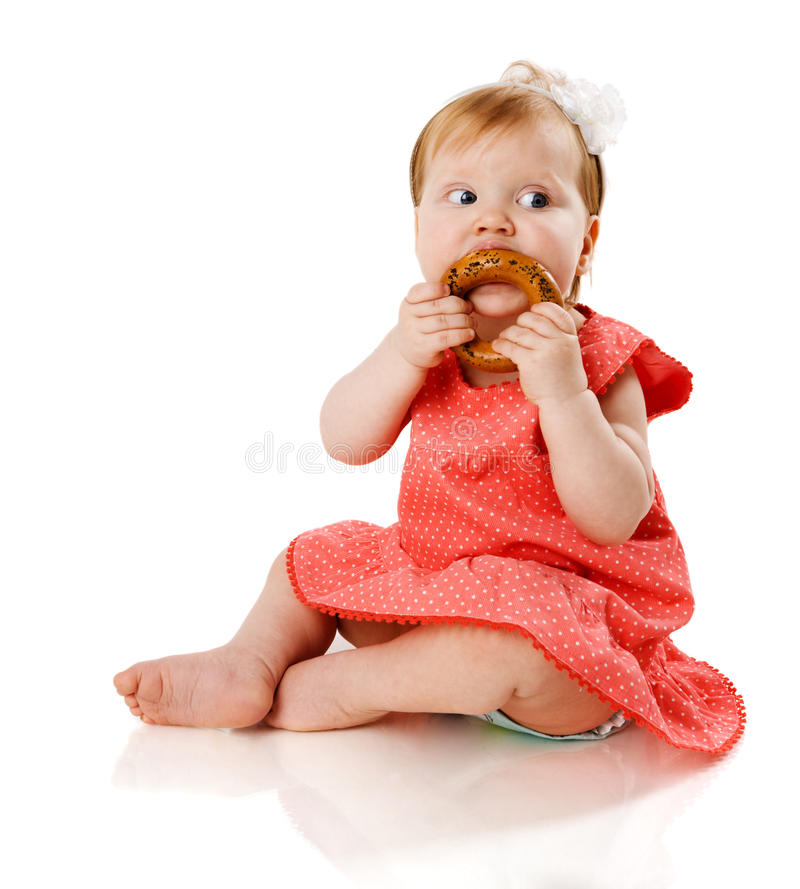 Baby eating. Child eating tasty cookie isolated stock image
