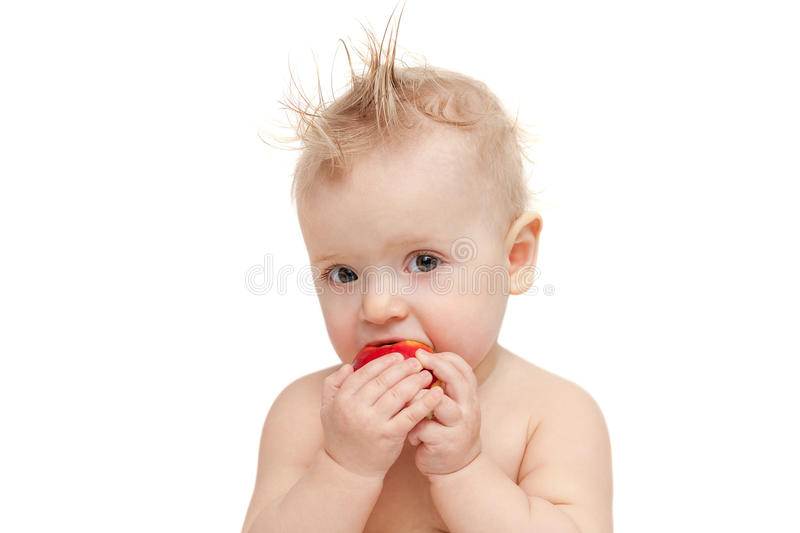 Baby Eating Apple Stock Photography