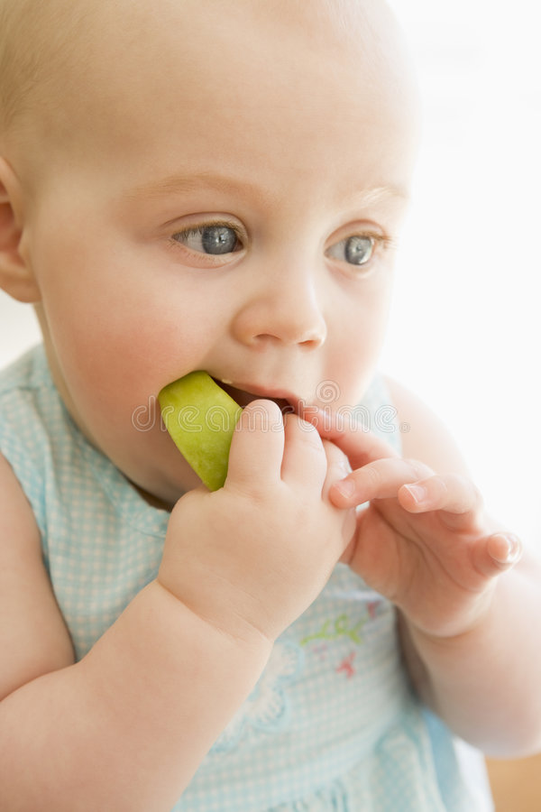 Baby eating apple indoors stock photography