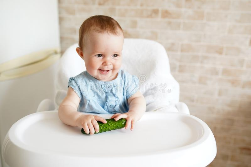Baby eating vegetables. green cucumber in little girl hand in sunny kitchen. Healthy nutrition for kids. Solid food for infant. stock photos
