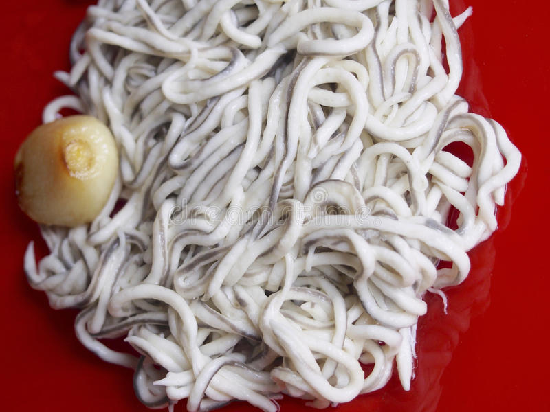 Baby eels with garlic. On red plate royalty free stock photo
