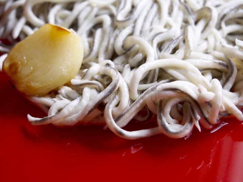 Baby eels with garlic. On red plate stock image