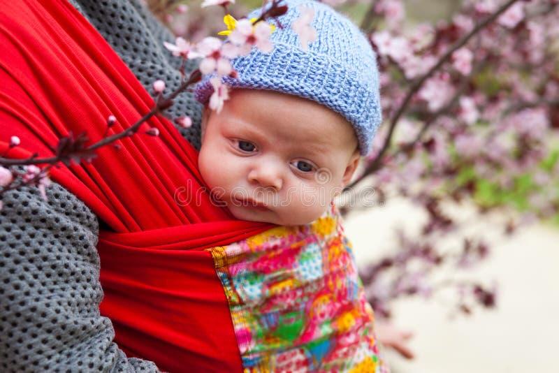 Baby in een slinger scard in de lente wordt vervoerd die stock foto