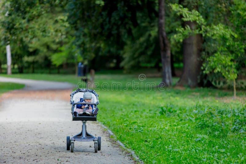 Baby in einem Spaziergänger in einem Park stockfotografie