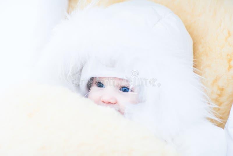 Baby in einer weißen Pelzjacke, die in einem Spaziergänger mit einem warmen Schaffellfuß - Muffe sitzt stockfoto