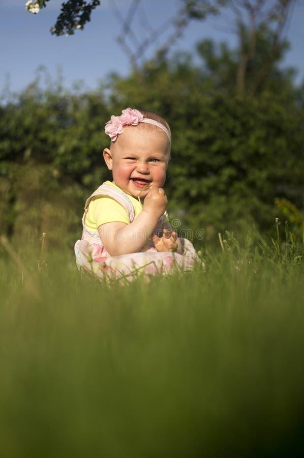 Baby in einer Wiese lizenzfreie stockfotos