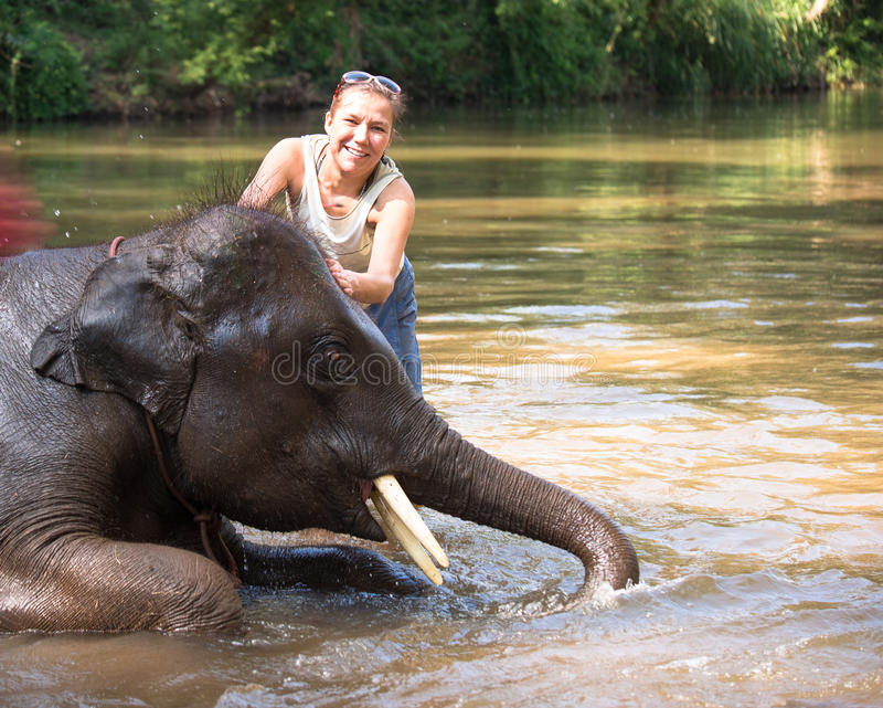 Baby elephant bathing in the river, and next to an elephant standing woman and stroking him stock photo