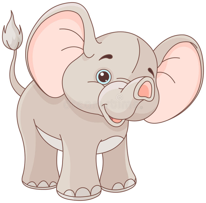 Baby Elephant stock illustration