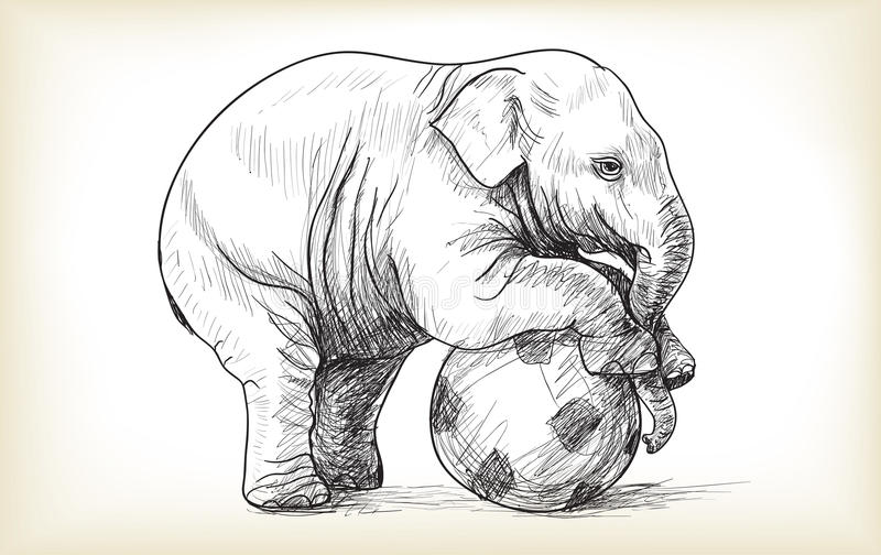 Baby elephant playing football, sketch and free hand draw. Illustration vector stock illustration
