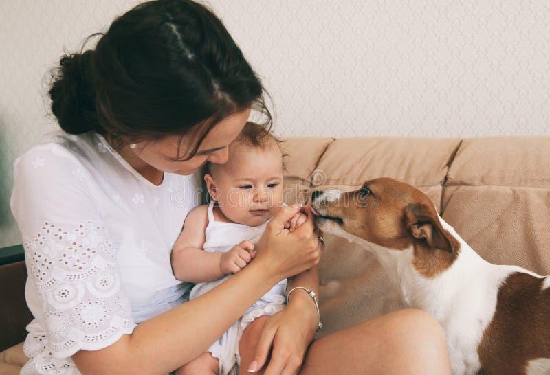 Baby en hond royalty-vrije stock foto