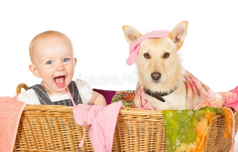 Baby en hond in de wasmand stock foto's