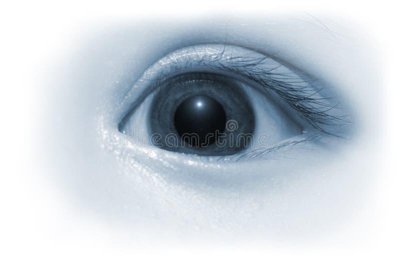 baby eye στοκ φωτογραφία με δικαίωμα ελεύθερης χρήσης