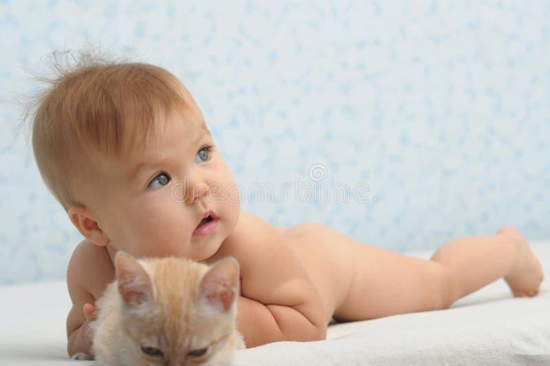 Baby fångade katten royaltyfri bild