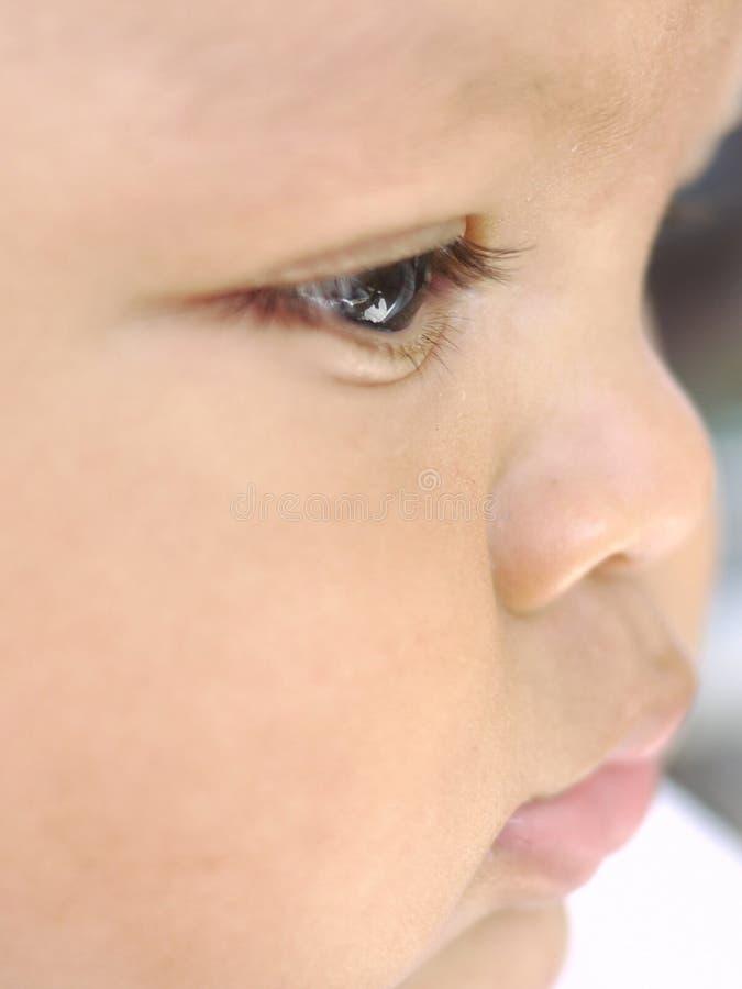 Download Baby face profile eye stock photo. Image of child, bambino - 21339492