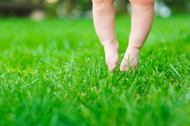 Baby feeling grass for the first time royalty free stock images