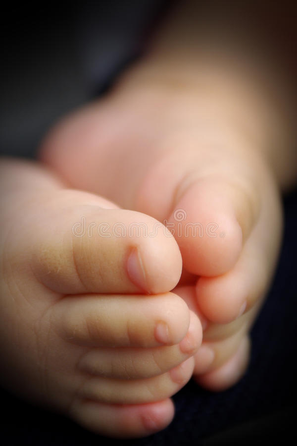 Download Baby feet stock image. Image of childhood, babyhood, feet - 14333429