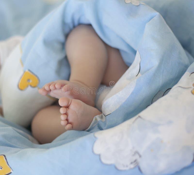 Baby feet stock photography
