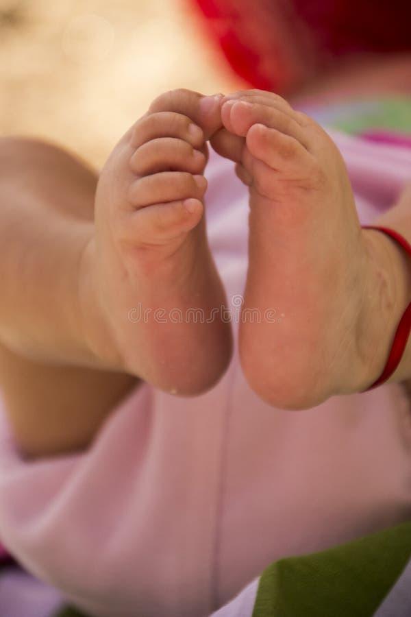 baby feet obraz royalty free