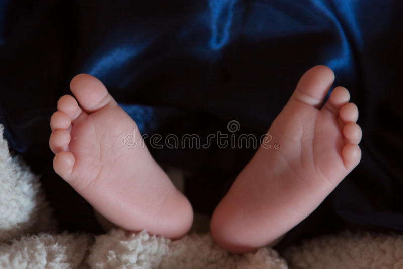 Download Baby feet stock photo. Image of bitsy, innocence, innocent - 39509640