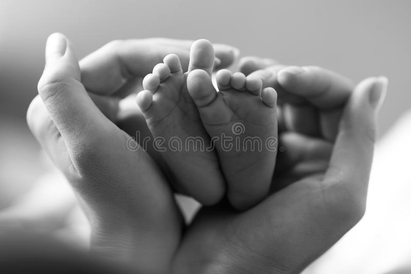 Baby feet cupped into mothers hands. Indoor royalty free stock images