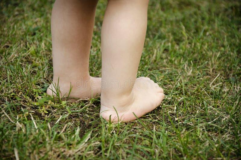 Baby feet on grass stock photo