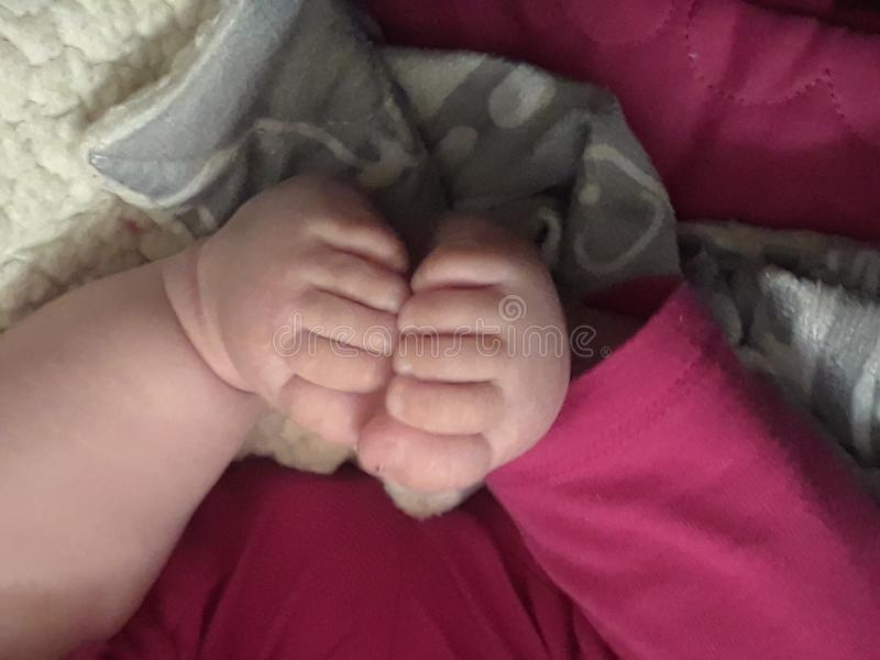 Baby folds toes royalty free stock photography