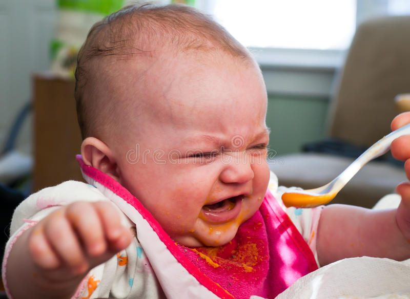 Baby Food Introduction. Four month old infant girl enjoying baby food sweet potatoes stock photography