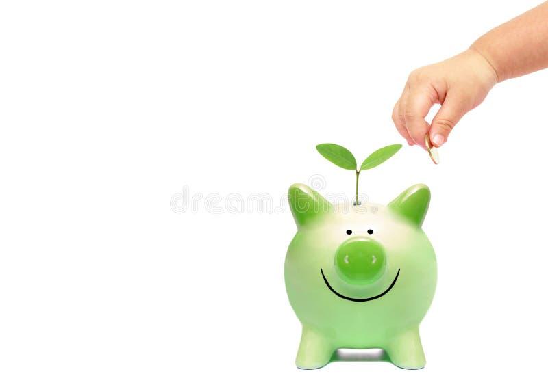 Baby gör grön besparingen royaltyfria bilder