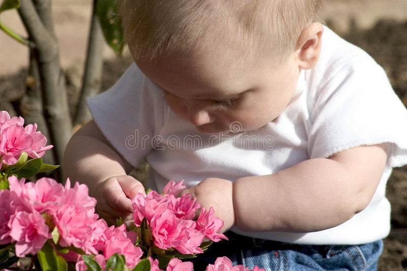 Baby Gardener Royalty Free Stock Images