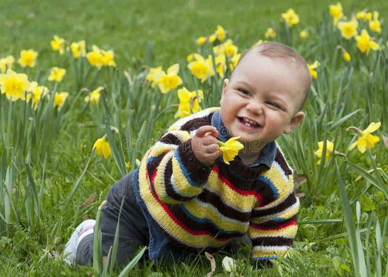 Baby in gele narcissen royalty-vrije stock foto's