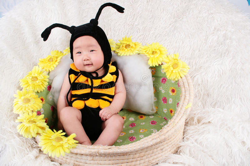 Baby girl in a basket royalty free stock photography