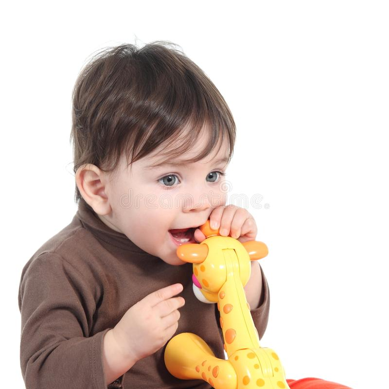 Baby girl biting an animal toy. Isolated on a white background royalty free stock photography