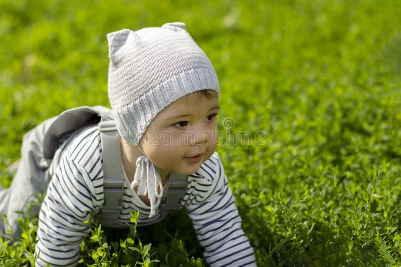 Baby girl boy crawling on the green lawn. Portrait of a child close-up. The baby learns to crawl. Gray clothes, hat, waterproof overalls and striped jacket stock images