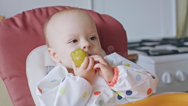 A Baby Girl Eating Plum at Home stock photo