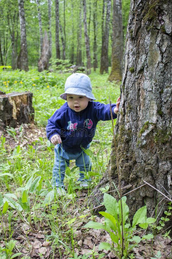 Baby girl in a hat and jeans surprised face. Baby 9 months exploring the forest grass and trees. First steps in nature stock images