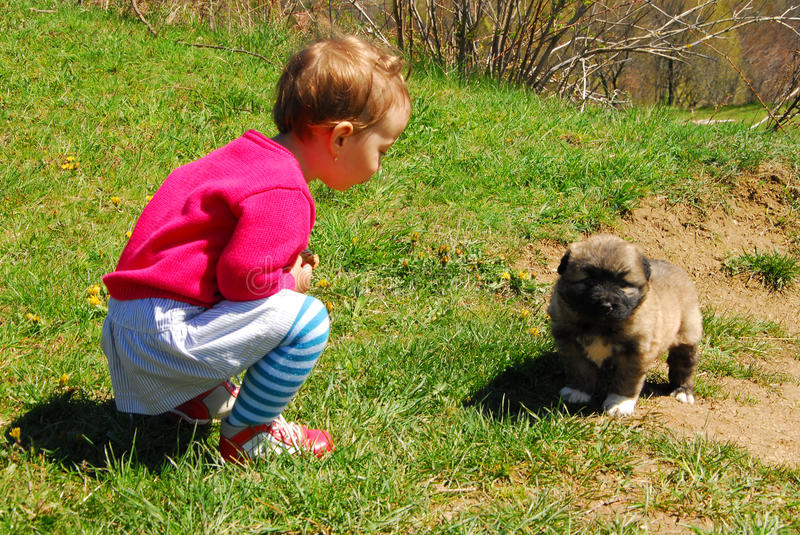 Baby girl with her little dog stock images