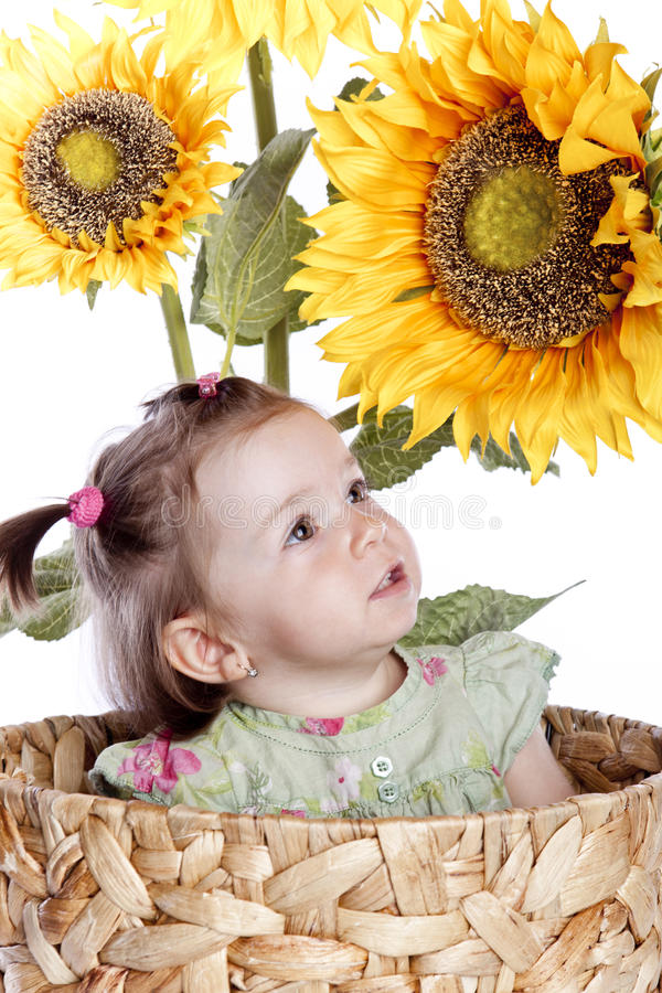 Free Baby Girl In Sunflowers Royalty Free Stock Photography - 14538347