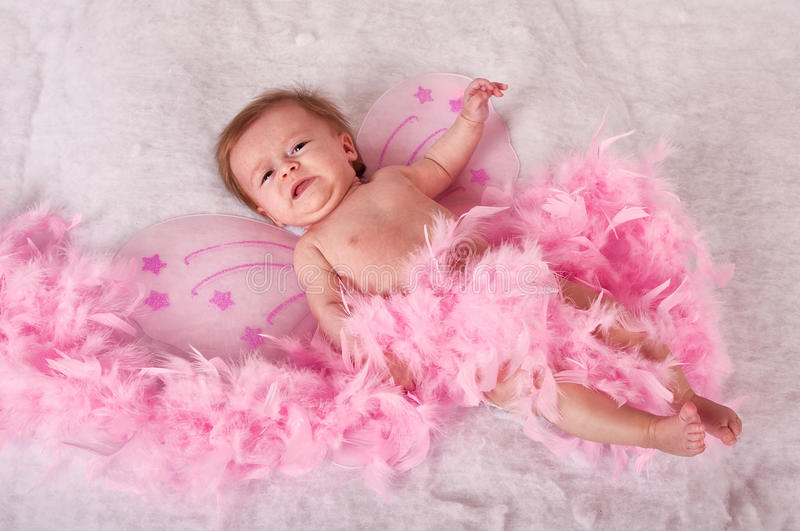 Baby girl with pink fairy wings stock images