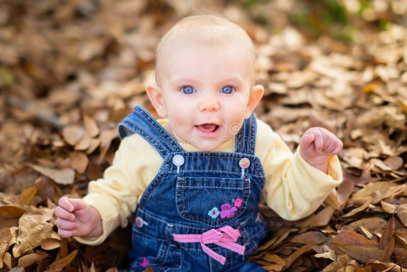 Baby Girl in Leaves stock photo