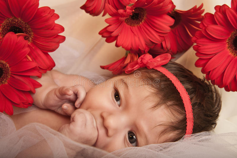 Baby Girl with Red Flowers stock photos